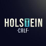 Holstein_Calf