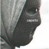 Cristiano_Capelli